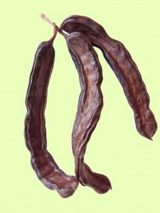 carob pods - locust bean